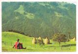 % carte postala (ilustrata) -BIHOR-Stana de Vale, Necirculata, Printata