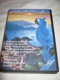 Colectie 10 DVD Filme desene animate dublate in limba romana