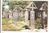 % carte postala (ilustrata)-MARAMURES-Cimitirul din Sapanta, Necirculata, Printata