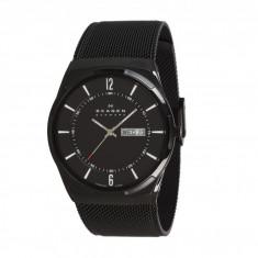 Ceas Skagen SKW6006 Aktiv Mesh Titanium Watch | 100% originali, import SUA, 10 zile lucratoare - Ceas barbatesc