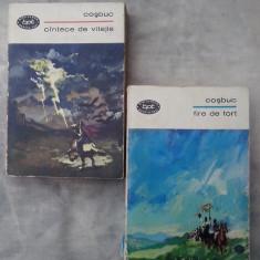 Fire de tort - Cantece de vitejie vol. I-II - Carte poezie