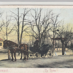 BUCURESTI LA SOSEA CLASICA MUSCAL CU CUPEU NECIRCULATA - Carte Postala Muntenia pana la 1904, Printata