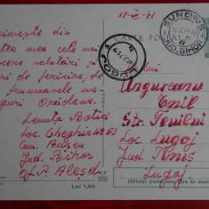 Vedere Oradea - Parcul Petofi - Carte Postala Banat dupa 1918, Circulata