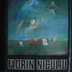 FLORIN NICULIU * ALBUM PICTURA