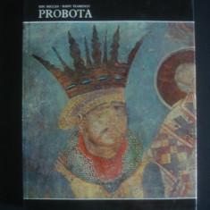 ION MICLEA, RADU FLORESCU - PROBOTA - Album Pictura