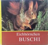 EICHHORNCHEN BUSCHI - Carte pentru copii in limba germana
