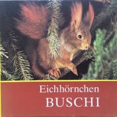 EICHHORNCHEN BUSCHI - Carte pentru copii in limba germana - Carte educativa