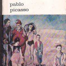 ANTONINA VALLENTIN - PABLO PICASSO ( BA )