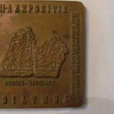 "MMM - Placheta Romania ""Republicana de Filatelie Brasov 1979"" bronz unifata"