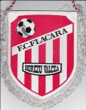 Fanion fotbal FC FLACARA HOREZU VALCEA