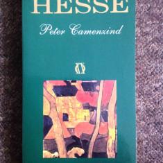 H. Hesse - Peter Camenzind - Roman, Rao