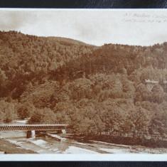 Carte postala - Busteni Castelul - Cantacuzino cu Podul - Carte Postala Bucovina dupa 1918, Necirculata