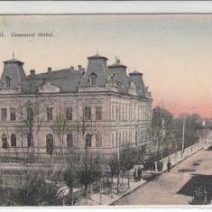 OLTENIA, CALARASI, GIMNAZIUL STIRBEI, CIRCULATA OCT.*909 - Carte Postala Oltenia 1904-1918, Printata