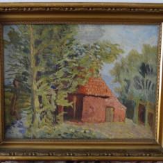 Tablou ulei pe panza-Casuta - Tablou autor neidentificat