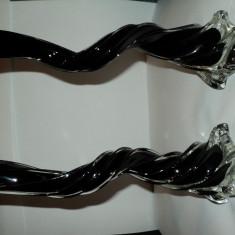 Vaze sticla neagra - Vaza sticla