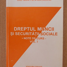 DREPTUL MUNCII SI SECURITATII SOCIALE, NOTE DE CURS- GIONI POPA GAVRILOVICI - Carte Dreptul muncii