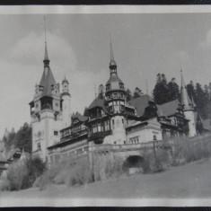 Vedere/Carte postala - Peles - Castelul - Carte Postala Bucovina dupa 1918, Necirculata