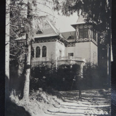 Vedere/Carte postala - Borsec - Carte Postala Bucovina dupa 1918, Necirculata