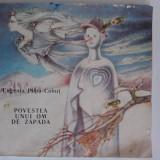 Povestea unui om de zapada - Eugenia Popa Cohut / C0P - Carte de povesti