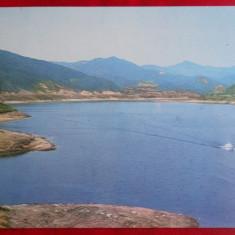 Vedere/Carte postala - Baia Mare - Lacul Firiza - Carte Postala Banat dupa 1918, Necirculata
