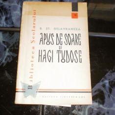 APUS DE SOARE SI HAGI TUDOSE B. ST. DELAVRANCEA - Roman