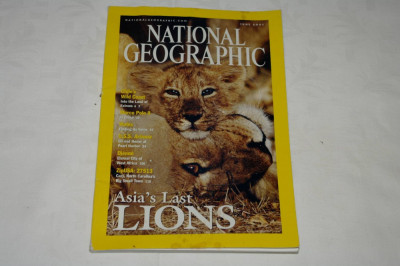 National Geographic - june 2001 - Asia's Last LIONS foto