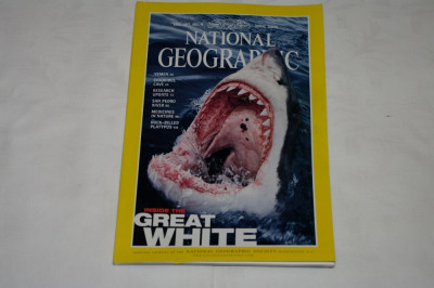 National Geographic - april 2000 - Inside the Great White foto