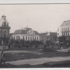 SATU-MARE, PIATA BRATIANU, Necirculata, Printata, Satu Mare