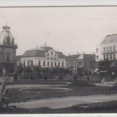 SATU-MARE, PIATA BRATIANU - Carte Postala Maramures dupa 1918, Necirculata, Printata
