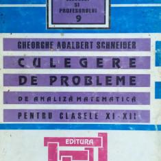 CULEGERE DE PROBLEME DE ANALIZA MATEMATICA PT. CLASELE XI-XII - G. A. Schneider