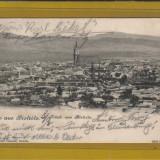 BISTRITA 1901