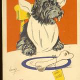 Carte postala ilustrata Franta, caine umanizat, la masa, semnata Lacroix