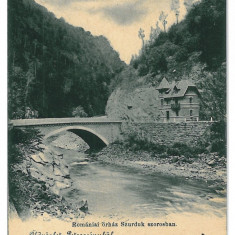 3291 - Gorj, SURDUC, bridge - old postcard - used - 1906 - Carte Postala Oltenia 1904-1918, Circulata, Printata