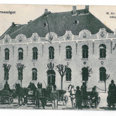 3245 - Maramures, SIGHET, Market, carriages - old postcard, CENSOR - used - Carte Postala Maramures 1904-1918, Circulata, Printata