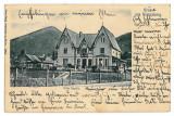 3232 - CAMPULUNG, Bucovina, Vila Sofia - old postcard - used - 1906