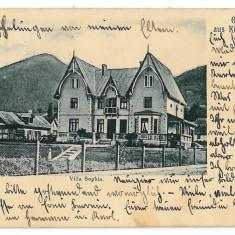 3232 - Bukowina, Suceava, CAMPULUNG - old postcard - used - 1906 - Carte Postala Bucovina 1904-1918, Circulata, Printata
