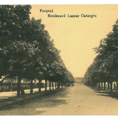 3243 - Vrancea, FOCSANI, Ave. Lascar Catargiu - old postcard - unused - Carte Postala Moldova 1904-1918, Necirculata, Printata