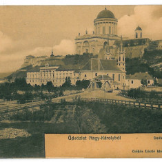 3256 - Maramures, Satu-Mare, CAREI - old postcard - unused - Carte Postala Maramures 1904-1918, Necirculata, Printata