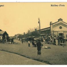 3241 - Vrancea, FOCSANI, Market - old postcard - unused - Carte Postala Moldova 1904-1918, Necirculata, Printata