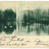 3257 - L i t h o, SATU-MARE, Park - old postcard - used - 1901