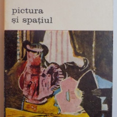 PICTURA SI SPATIUL de NOEL MOULOUD, BUCURESTI 1978 - Carte Istoria artei