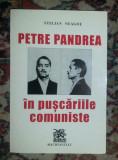 Petre Pandrea in puscariile comuniste  / Stelian Neagoe