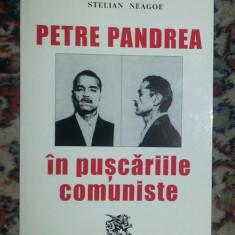 Petre Pandrea in puscariile comuniste / Stelian Neagoe - Istorie
