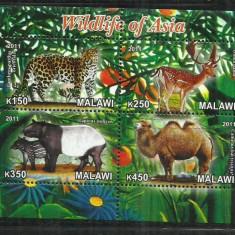 F 82 FAUNA - MALAWII - BLOC NESTAMPILAT - Timbre straine