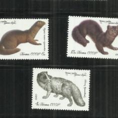 F 91 ANIMALE CU BLANA - URSS - SERIE NESTAMPILATA - Timbre straine