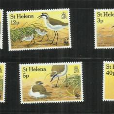 F 164 - PASARI - ST. HELENA - SERIE NESTAMPILATA - Timbre straine