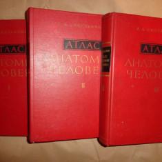 Atlas de anatomie umana (in limba rusa/cu numeroase figuri)- Sinelnikov