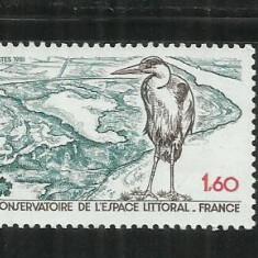 F 131 -  FRANTA 1981 - PASARI,  SERIE NESTAMPILATA MNH