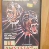 THE DOBERMAN GANG ( 1972 ) - FILM DE COLECTIE CASETA VIDEO VHS - Film Colectie, Engleza