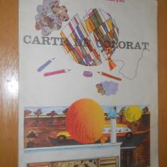 CARTE DE COLORAT - LIANA MARIA PETRUTIU - 1989